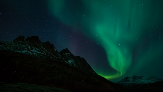 Aurora Boreale luci nella notte norvegese (Valvika, Nordland, Norvegia)